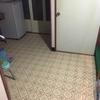 野良猫さんが去った後、家をきれいに掃除しました~☆