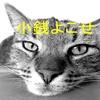 あきらさんの奇妙な冒険~猫が可愛くても小銭稼ぎは忘れない~