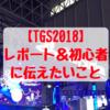 【TGS】東京ゲームショウ2018レポート!初心者向けの楽しみ方も紹介【ビジネスデイ初参加】