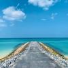 【沖縄 国頭村ドライブ①】隠れた絶景がたくさん! 海と森を贅沢に楽しむ