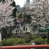 上野恩賜公園(桜の名所・お花見おすすめスポット)