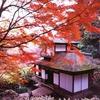 むかちんと神奈川県へ旅行😃第5弾