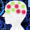誰でもすぐに実践できる「脳を最高の状態にする」12の習慣
