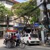 ベトナム・ハノイの旧市街散歩(ハンボー通り、ハンマー通りなど)