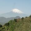雪解け始まる富士山ビュー 箱根明神ヶ岳登山!