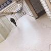渋谷駅より徒歩30秒!夜間診療OKのむちうち交通事故・労災治療の整骨院/恵比寿・目黒・五反田