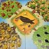 ドイツ玩具メーカーHABA社の魅力がギュッと詰まった果樹園ゲームを紹介するよ!
