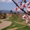 No:087【佐賀県】気分はドラクエ!?「吉野ヶ里遺跡」の広大なフィールドを探検しよう!
