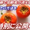柿渋エキス効能たっぷり驚きのカテキン効果とは?