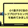 Z会プログラミング講座 with LEGO® Educationは小1でも受講可能なのか?