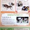 【JRA競馬博物館】第5回東京競馬開催期間中の展示・イベントのお知らせ