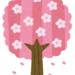 お店で春を感じませんか?!ピンク色アイテムのご紹介!【理紗子のちょっと気になるそこんとこ!Vol.14】
