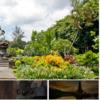 【ワールドベンチャーズで超豪華な旅行ツアーを世界最安値で!】みんな大好きなバリ島(インドネシア)の高級リゾートホテルに格安で泊まって日頃の疲れを癒やしつつ、観光名所に色々回れる大満足ツアー!【ドリームトリップス】