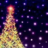 クリスマスの風物詩イルミネーションをめぐる!むすめの最近のお楽しみ