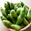 初夏を告げる野菜「そら豆」