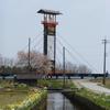 キリコ橋と桜