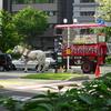 東京五輪、マラソン・競歩「札幌開催」決定