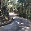 高知の超低山帯・南嶺を降る...: 烏帽子山から神田まではちょっと分かりにくい