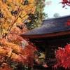 埼玉県のここにしかない魅力#30新座市