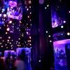 進化する水族館 マクセル アクアパーク品川で開催中の 【NAKED 花火アクアリウム】