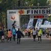 JALホノルルマラソン2017 参加ツアーの発売開始。4泊6日198,000円〜 旅工房