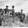 1945年 6月18日 『バックナー中将、戦死』