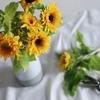 お花の定期便サービス全部の徹底説明と、お花屋直営の定期宅配がおすすめの理由