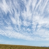 秋色パレット Today's blue sky
