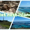 In Australia Part148 Rot Nest Island