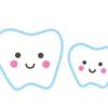 え?!この乳歯、抜歯しなきゃだめなの?!本当に抜歯が必要か調べてみた。