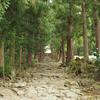 初夏の長野旅行:浄光寺は静かで緑豊かでとても素敵なお寺でした