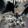 ○バットマン:梟の法廷を読む