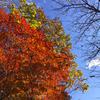 (御朱印掲載なし)〜野沢温泉 → 真冬の志賀高原越え・・・《秋の ゆるゆる信州❾》