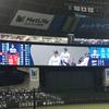 メットライフドーム『西武ライオンズvs広島東洋カープ』交流戦(野球ネタ)