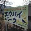 200111 梅田湖ロウバイ・パーク