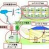 東京ガス、遠隔検針を導入へ