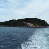 猿島|豊かな自然と歴史遺産が残る東京湾唯一の自然島を紹介!