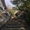 吉田山付近のパイロン