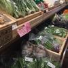 春らしい野菜がいっぱい🥬‼️