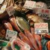 立山連峰を見つめながら海鮮を食す ~氷見漁港場外市場 ひみ番屋街~