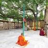 世界一周187日目 インド 〜ブッダが悟りを開いた聖地で、高熱にうなされる(ブッダガヤ)〜