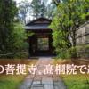 紅葉の名所、大徳寺高桐院にいってきました