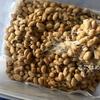 ハンガリーで納豆作り。大豆を圧力鍋で蒸して作った結果。