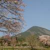 修験道息づく「三多気の桜」を訪ねる