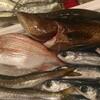 本日到着!鹿児島の漁師さんからの天然鮮魚