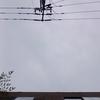 作曲工房 朝の天気 2018-05-30(水)くもり
