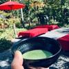 『金閣寺』のお休みどころでお抹茶とお菓子『金閣』を満喫。まったりとした時間をいただきました。
