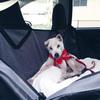 ドライブの必需品、犬の安全を守るカーシートが大活躍