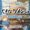 ヤマザキ 夏季限定 大きなツインシュー塩バニラクリーム&ホイップ 食べてみました