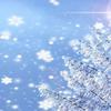 【冬といえば、雪 語源】ゆきよし(斎潔)・かみのみゆき(神の御幸)・ゆき(斎忌)・ゆき(行き)【謂われ・考察】